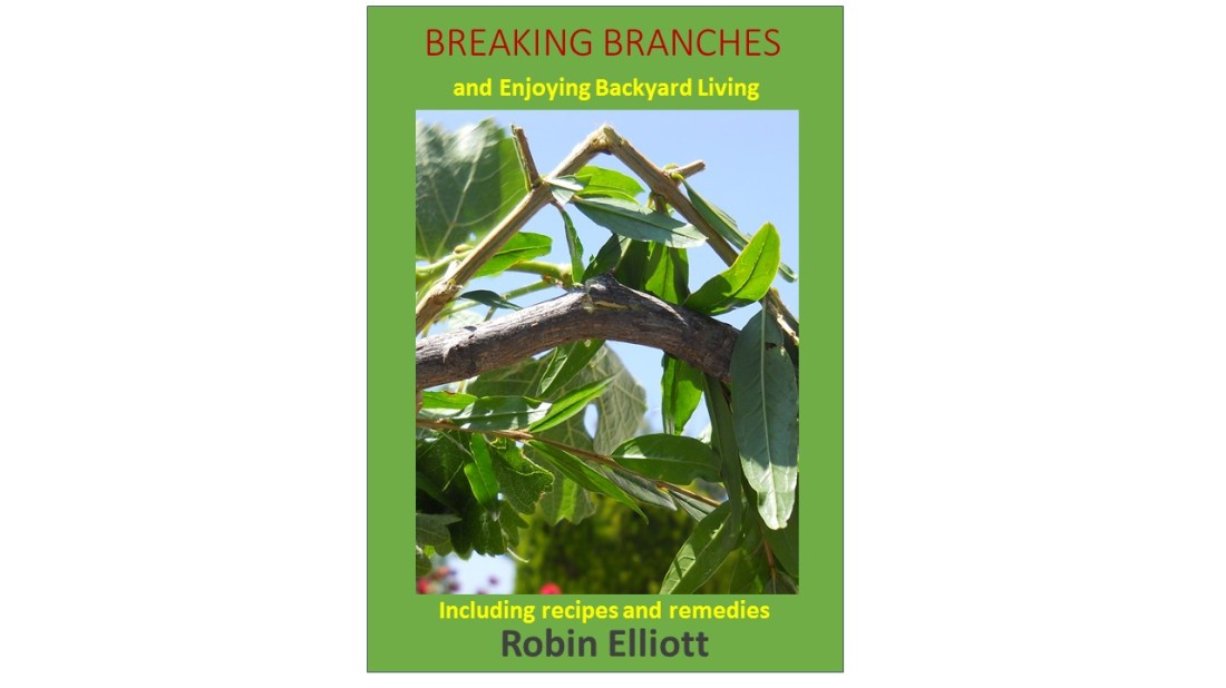 Breaking Branches